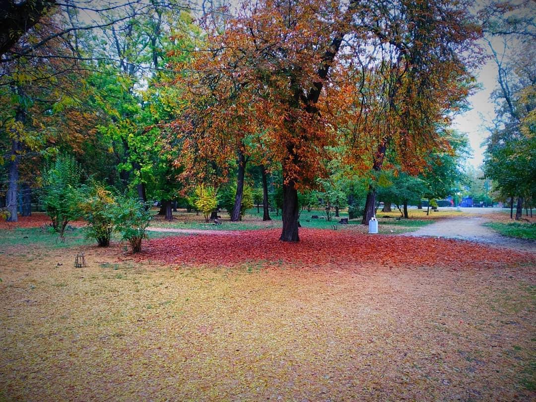 Картинки осень в таганроге