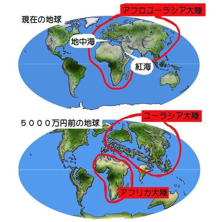 "川崎悟司 on Twitter: ""地球史ス..."