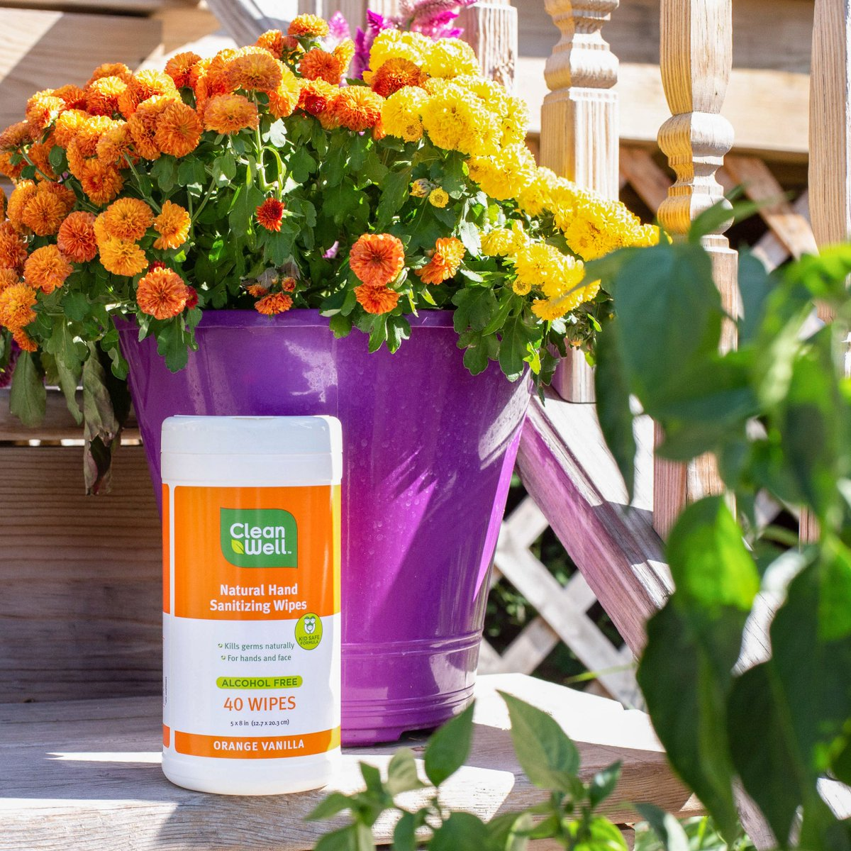 Keeping your family germ free never goes out of season.  #germfree https://t.co/OmJFoNswcR