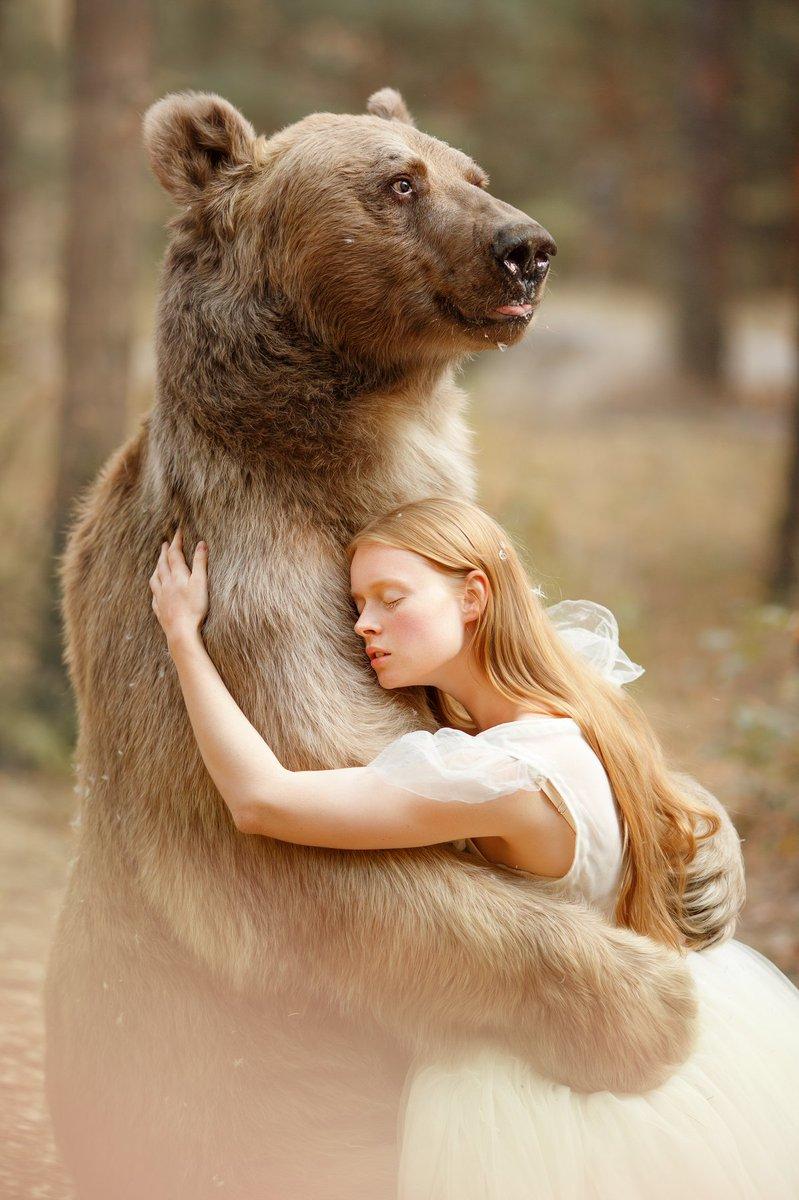 Медвежонок обнимает картинка