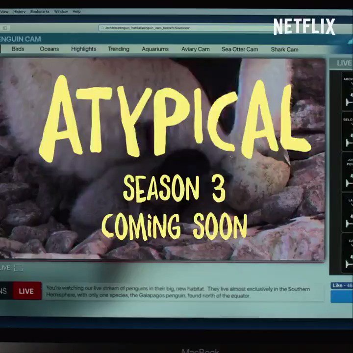 It's a great day, because Atypical Season 3 is on the way! 🐧 Coming soon to Netflix.