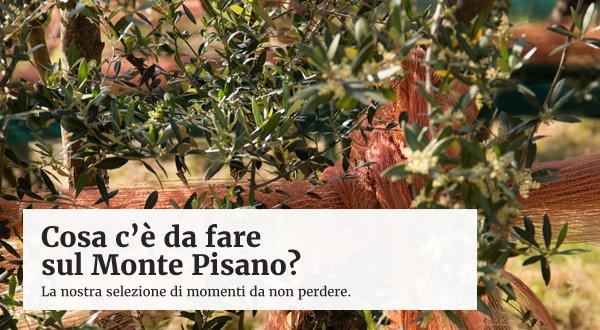 online Il Romanticismo