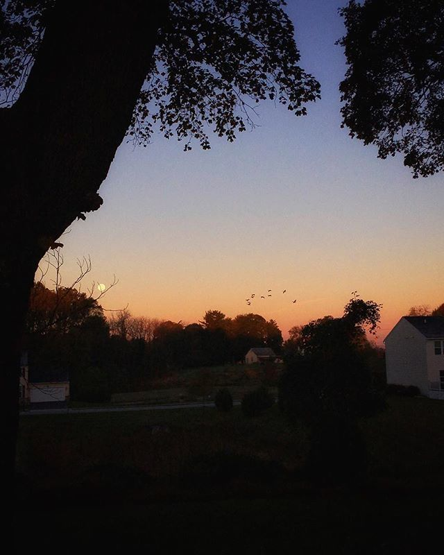 Morning moon and geese. The gift I was given because my son forgot his lunch, and I chased after him. . . . #outoftheordinarypodcast #bestillandknow #itiswell https://ift.tt/2OLp9ANpic.twitter.com/tJzzgHFMxP