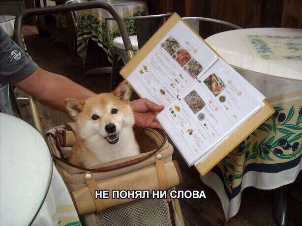 book Основы криптографических алгоритмов.