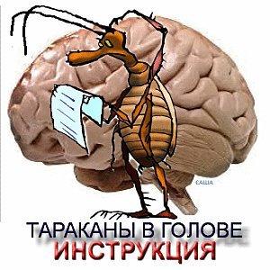 Прикольные гифки тараканы в голове, картинки красивые