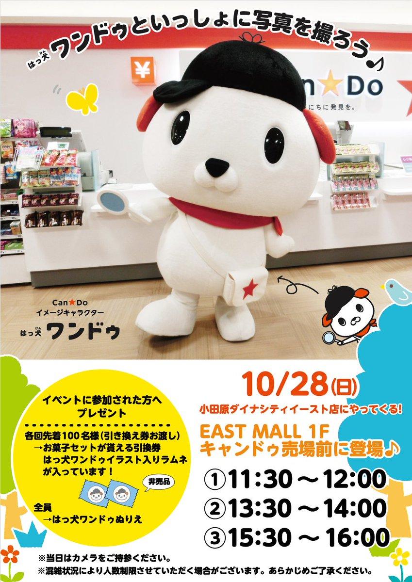 test ツイッターメディア - ☆イベント情報☆ 10月28日(日)小田原ダイナシティイースト店に、 #はっ犬ワンドゥ がやってくる! たくさんの人にお会い出来るのを、はっ犬ワンドゥも楽しみにしています★ 皆様のご来店を心よりお待ちしております。 地図→https://t.co/wePajckybS #キャンドゥ #100均 https://t.co/X4FdZnWPx4