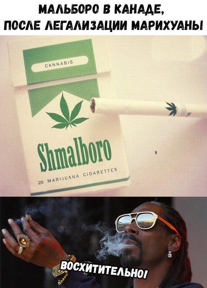 Продажа сигарет с марихуаной марихуана в домашних условиях выращивание