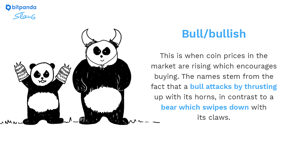 B is for Bull/Bullish! Used to describe the market sentiment. In our ongoing slang series you will learn the most popular slang terms about Bitcoin and Blockchain #bitpanda #bitcoin $BTC