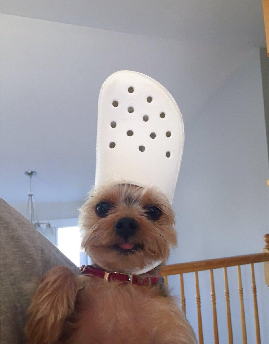 Kijk eens wat een mooie hoed