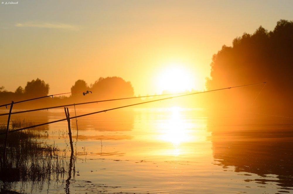Фото доброе утро рыбаки