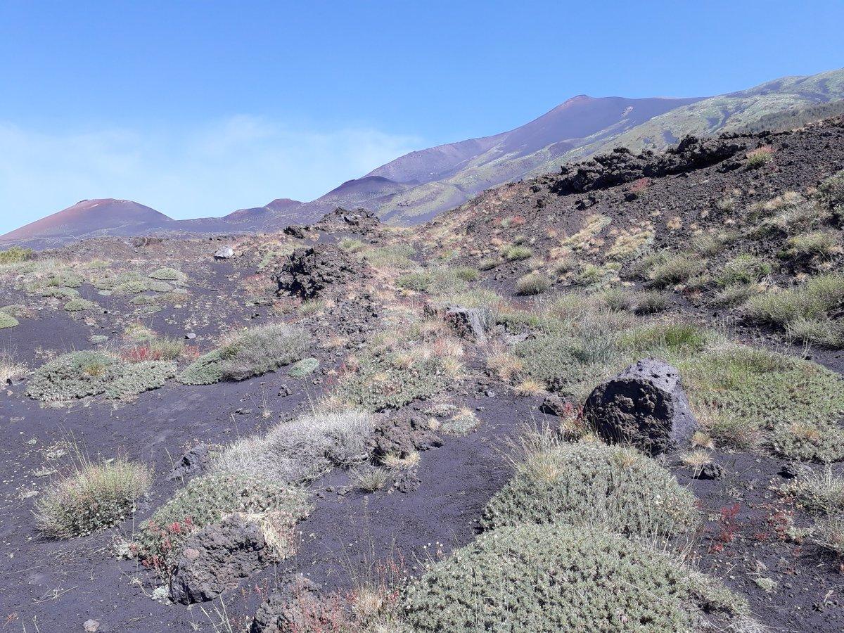 Mount etna Rock DatingDating Ihre Mitbewohnerin