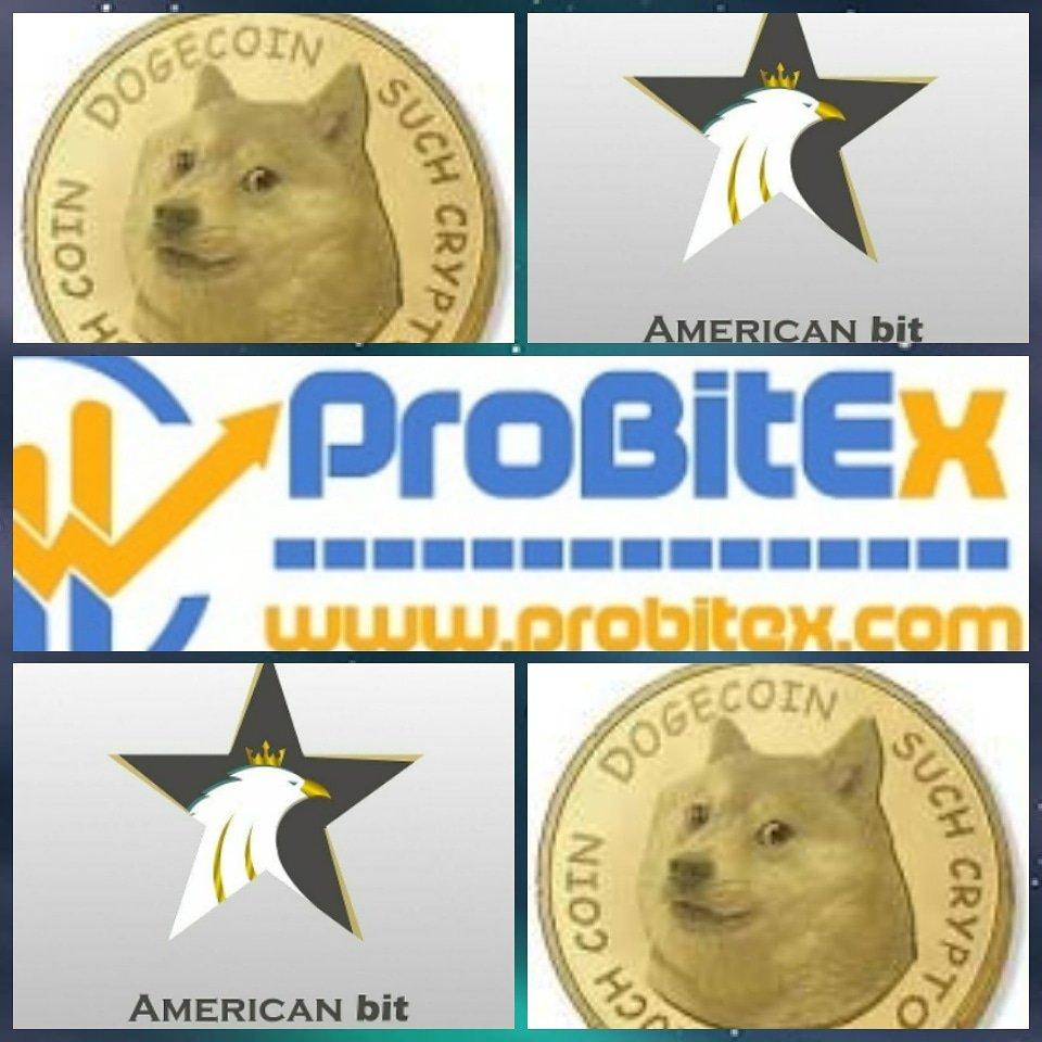 ハッシュタグ #probitex