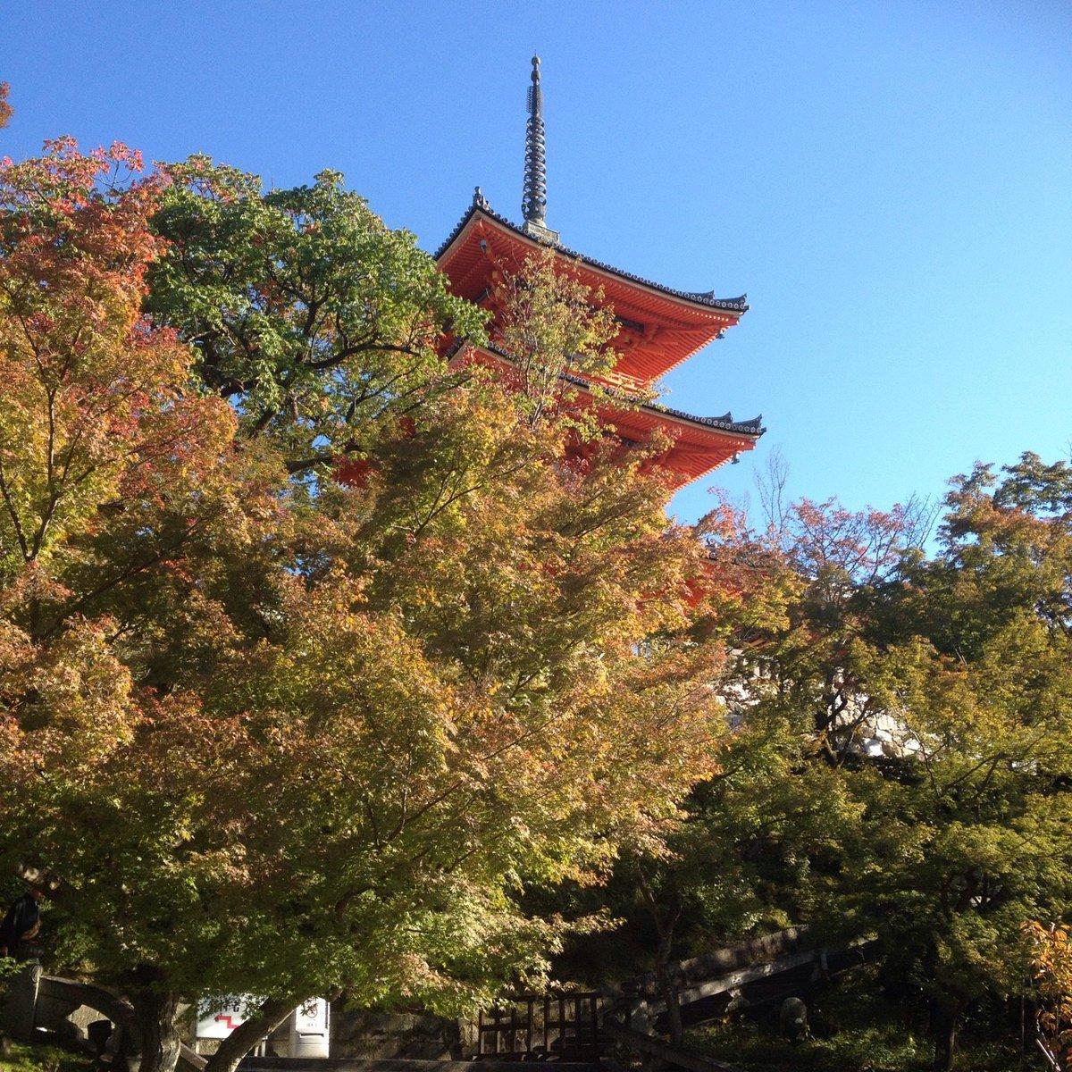 清水寺 放生池からの三重塔