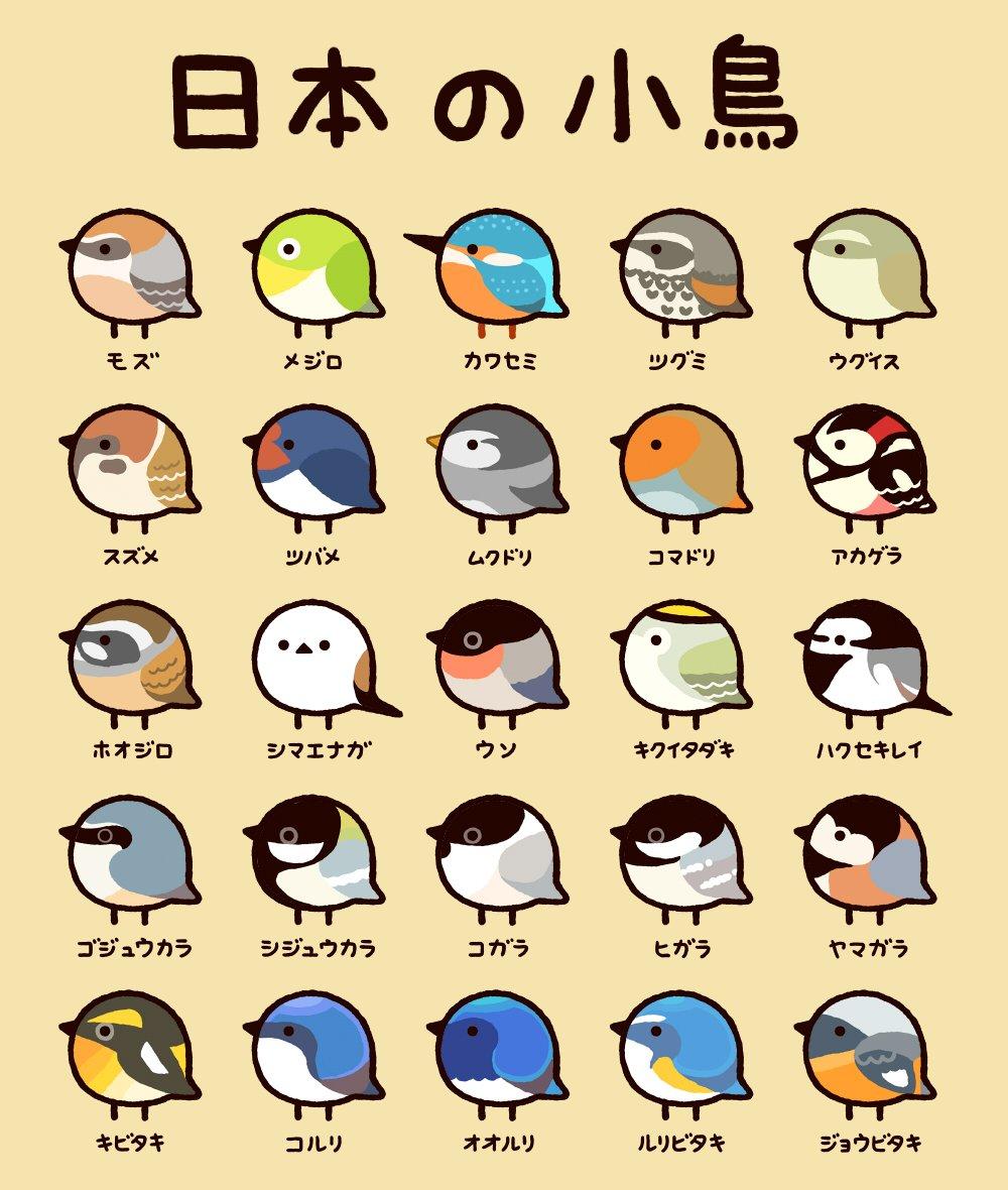 日本でも見られる小鳥を集めてみました