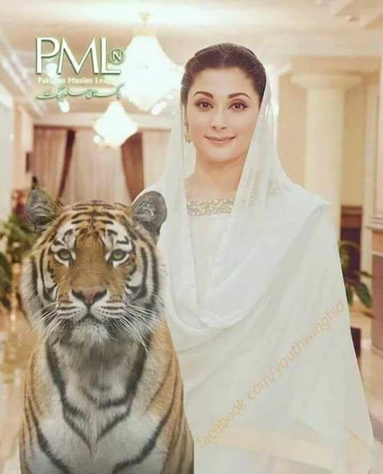 Happy Birthday to my great sister Maryam Nawaz Sharif.