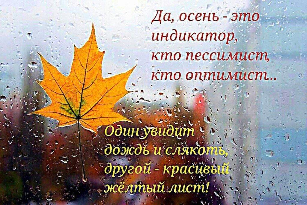 Прикольные картинки с надписями про осень и дождь