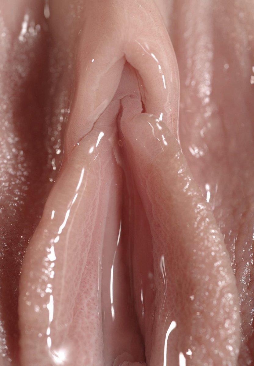 Мягкие мокрые киски #2