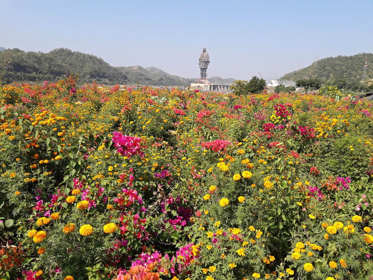 Valley Of Flower Being Developed At 17 Km Long Bank Of