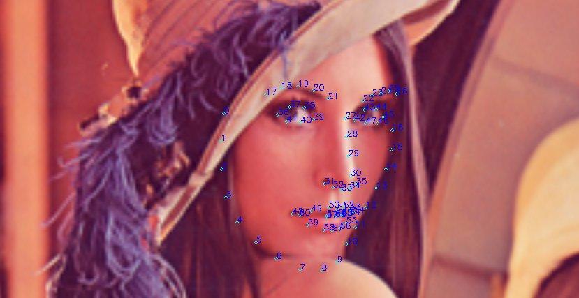 顔のランドマークを検出 Python + OpenCV + dlib を使う