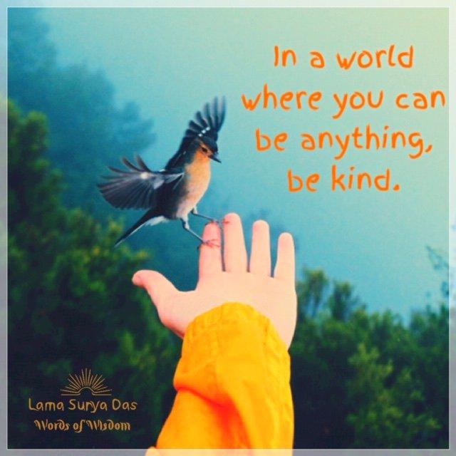 #DalaiLamaWisdom #Kindness #LovingKindness https://t.co/KT5bTkHCBT