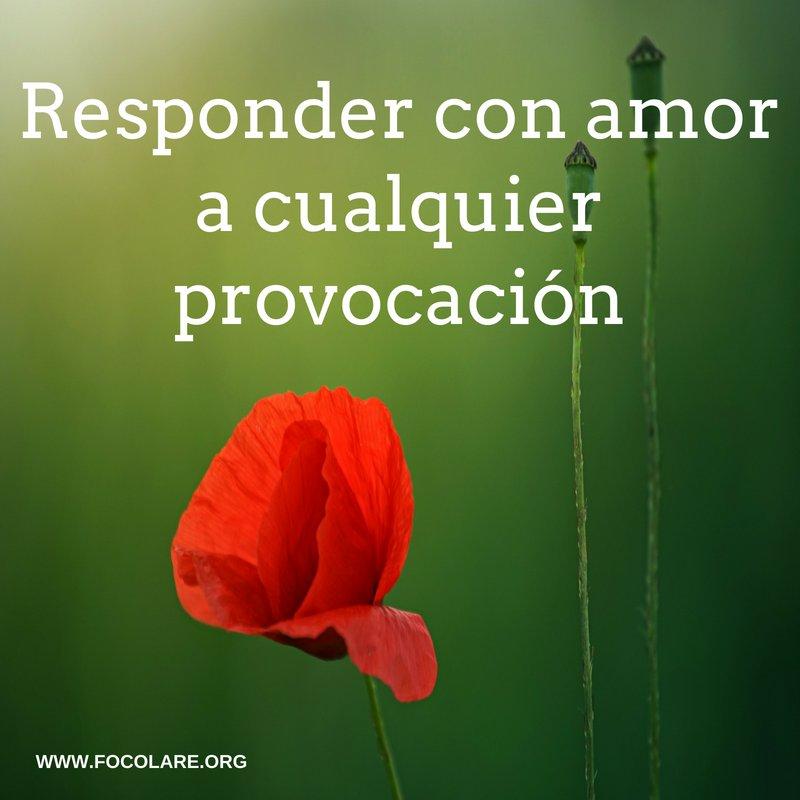 Focolareorg Es On Twitter Frase Del Día Responder Con