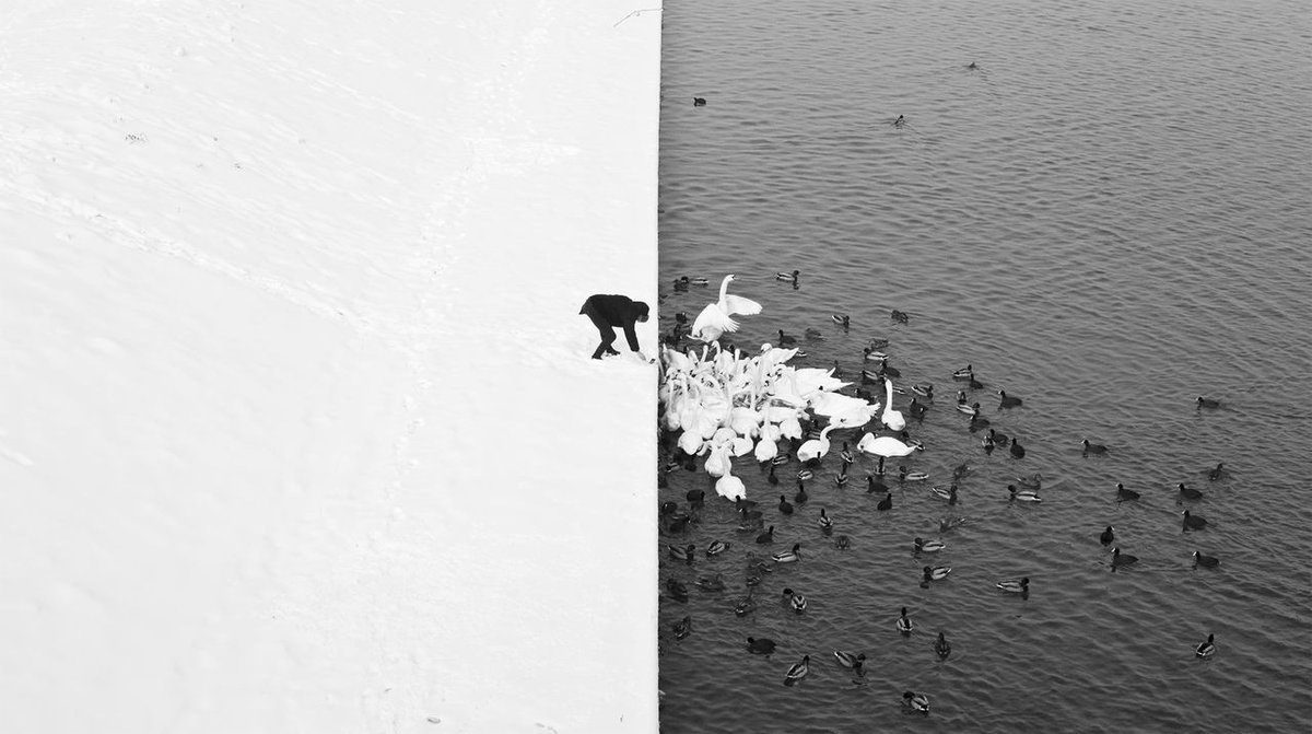 The line may have been drawn, but #TakeThisMoment to reach over it with #kindness.  RT @archillect: https://t.co/kSUQ61PmOD