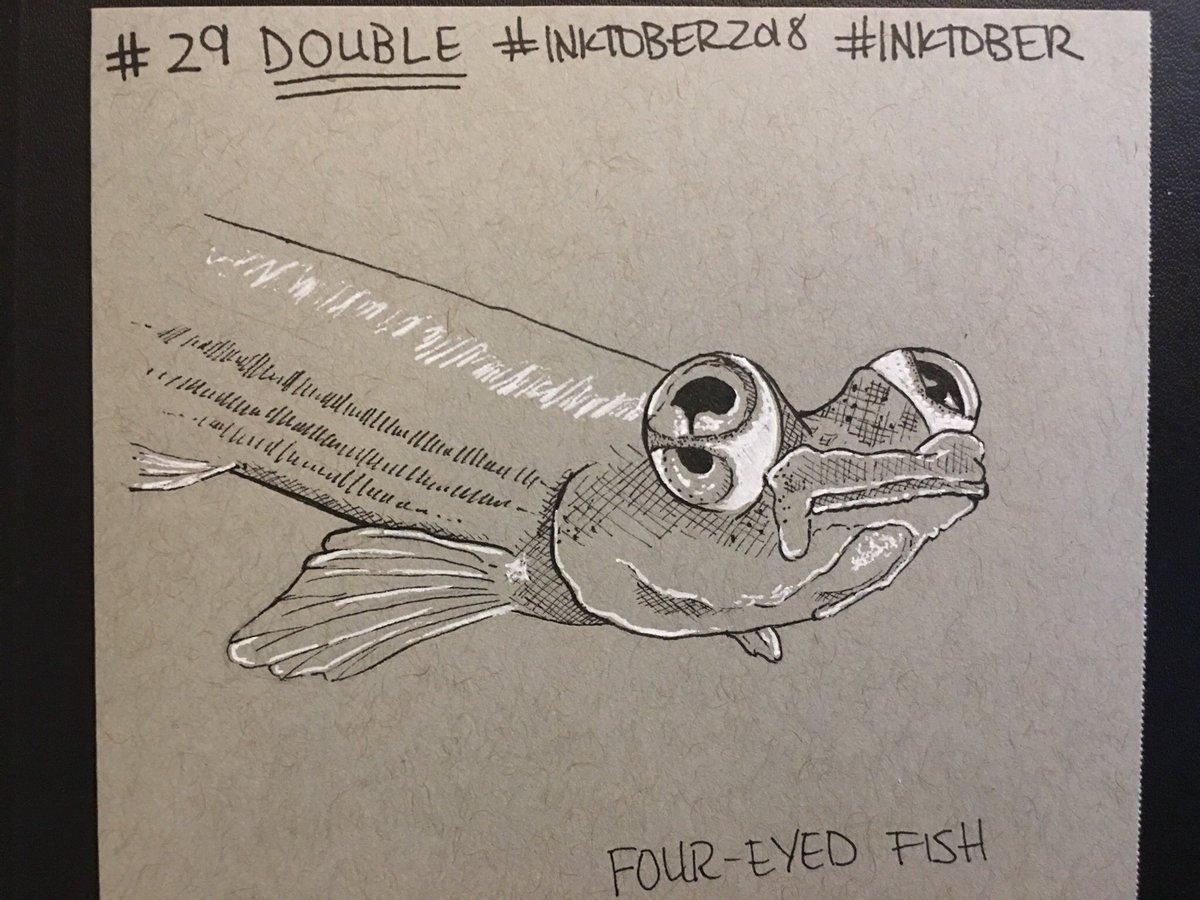 Weird Four Eyed Fish 9