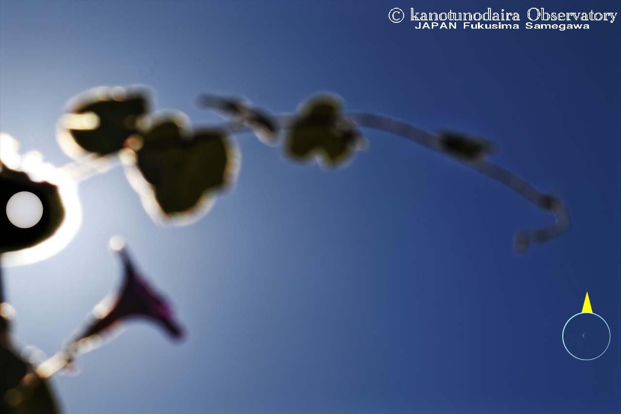 太陽近傍の金星