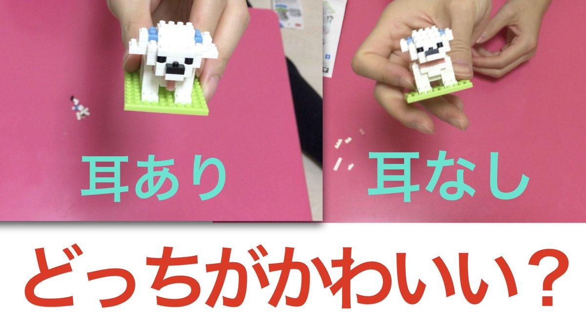 test ツイッターメディア - 本日の配信→マルチーズの立体パズル作ってみた!! DAISOの立体パズルPart3です。はまってしまいました。全部買ってしまうかも(笑)耳ありか耳なしかどちらがお好みですか??ぜひご覧ください! #マルチーズ #パズル #puzzle #ダイソー #DAISO https://t.co/V9f3sXRPkI https://t.co/5OUb10rJL7