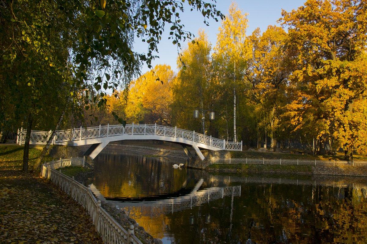 Парк лианозово картинки