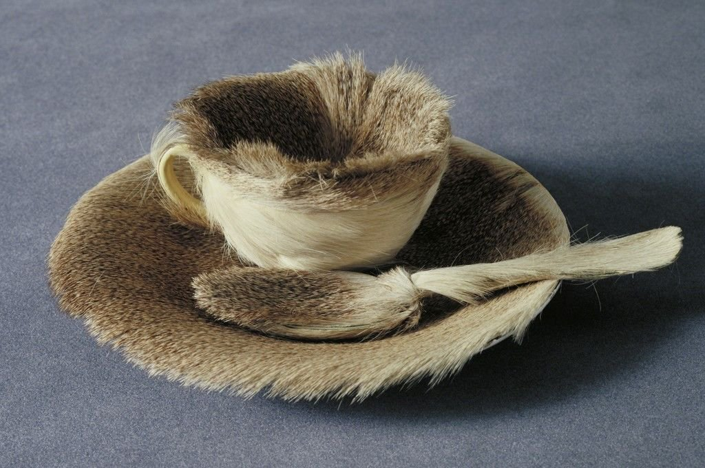 MoMA's first work by a female artist was a fur-lined teacup: http://bit.ly/2CU879D