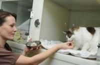 Vi presentiamo una nuovo Veterinario a Bovolone ! :) Bovo Dr. Carlo - https://www.clinicheveterinarie.net/bovo-dr-carlo-bovolone/… #AllergologiaVeterinariaVerona #AppuntamentoClinicaVeterinariaVerona #BravoVeterinarioBovolone #ClinicaVeterinariaVerona #DayHospitalAnimaleVerona #DermatologiaVeterinariaBovolone ...pic.twitter.com/XzIzSi4Jal