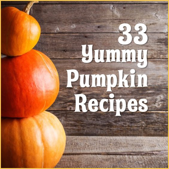 33 Yummy Pumpkin Recipes https://t.co/TPL4ojCITt https://t.co/UBixTF4Ixt