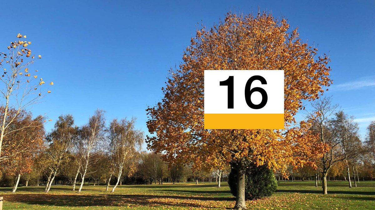Despite some rain today, both Scotland and N. Ireland managed to clock up 16C as an afternoon high. Lou L