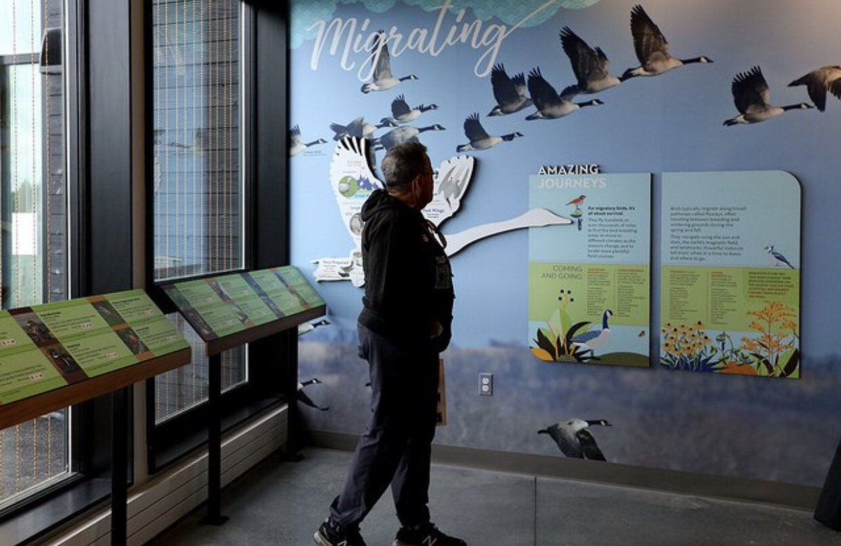 The European Starling can be spotted in #StrawberryMansion all year round! Stop by the Discovery Center in Fairmount Park to get to know these & other bird species 🐦 http://ow.ly/lq9W30my99o