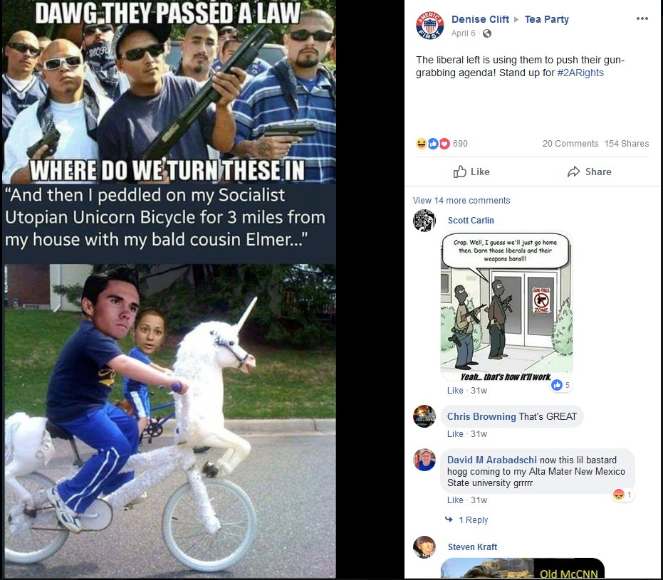 More posts about David Hogg and Emma Gonzalez