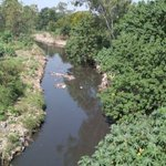 Image for the Tweet beginning: From #river to #sewer, Paondhoi