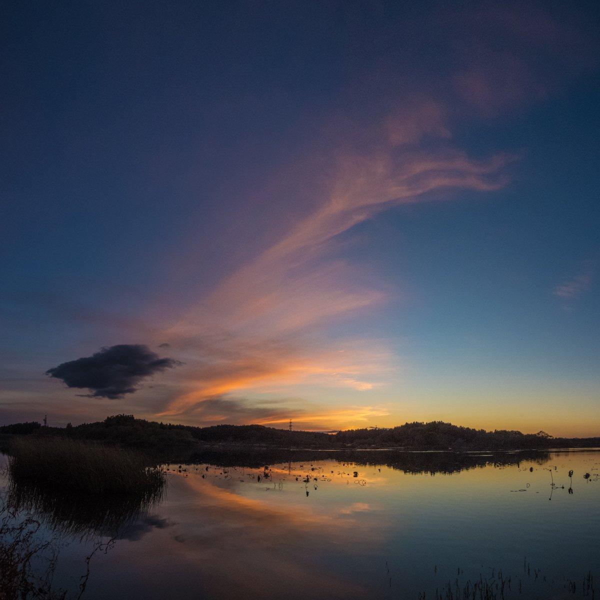 RT @T_Yusa: 化女沼の夕景 晴れていたので大崎市古川にあるラムサー条約登録湿地・化女沼(けじょぬま)に出かけてきました。夕焼け雲がきれいでした。 この後、壮大なマガンのねぐら入りも見ることができました。 https://t.co/cixQ3T8lwm