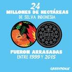Selva Twitter Photo