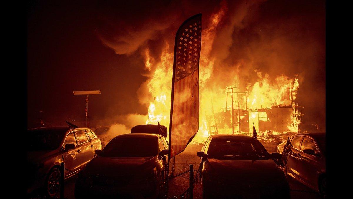 SarasotaSheriff's photo on #CampFire