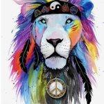#HippieAlfa Twitter Photo