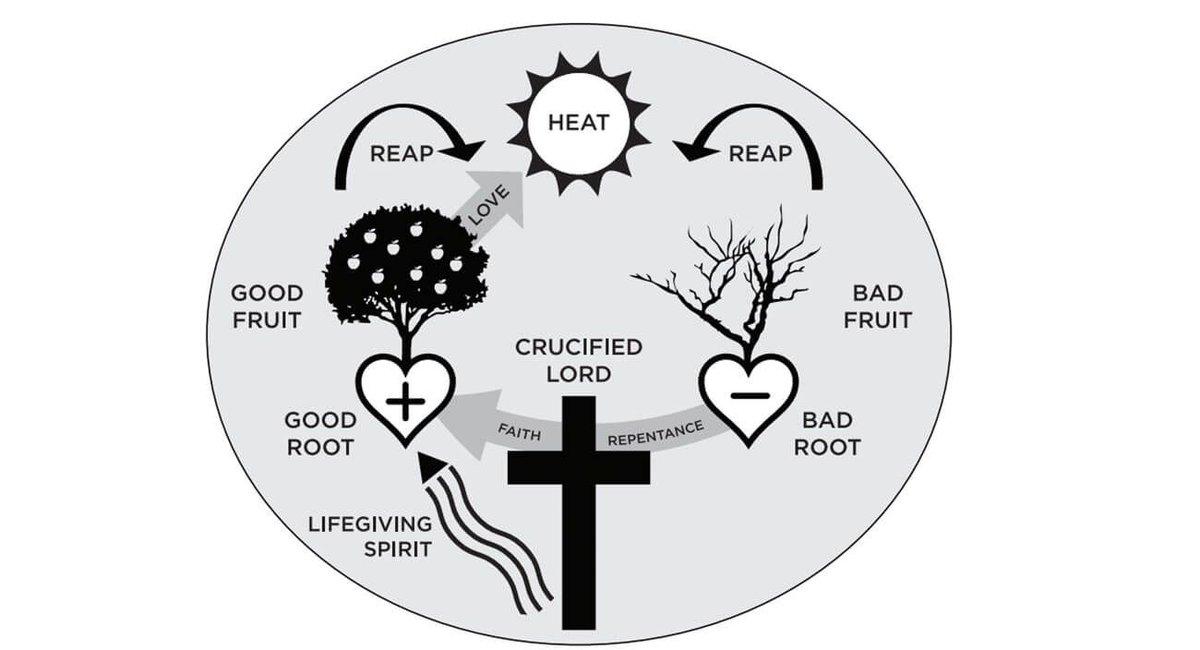 Image result for dynamics of biblical change ccef
