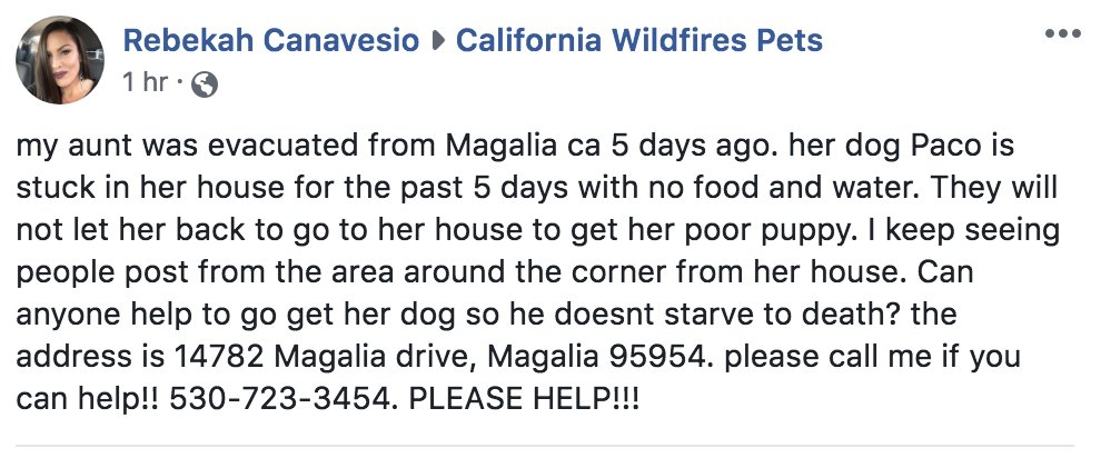 Resident looking for help #MagaliaCA #CaliforniaWildfires #Lost / #LeftBehind #DOG #LOSTDOG <br>http://pic.twitter.com/X5if22WPR8