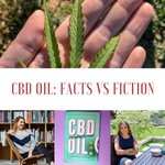Intrigued/confused/suspicious of #CBD oil? Me too 🙋🏽 https://t.co/pu0gPU4WNB