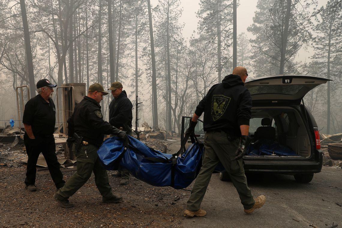 Fa Conti's photo on #CampFire