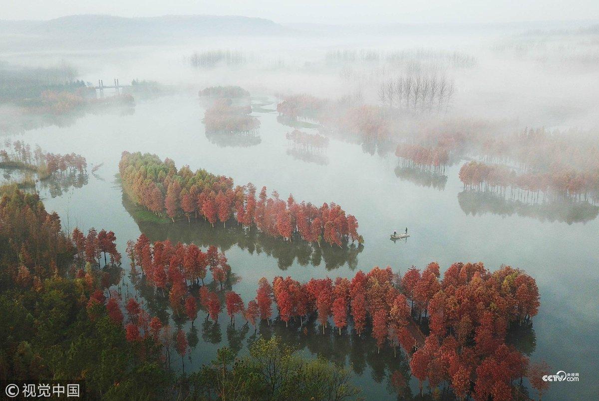 xinhua china anhui laian pond cypress scenery scenery - HD1199×803