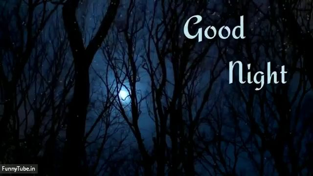 good night photo video download