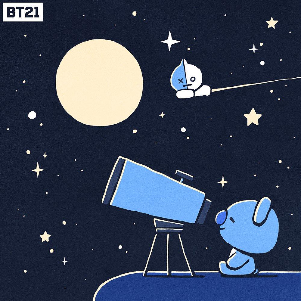 キラキラ光る夜空の星?⭐️✨#KOYA は何を見ているのかな?#おやすみ #星座 #天体観測 #VAN #BT21