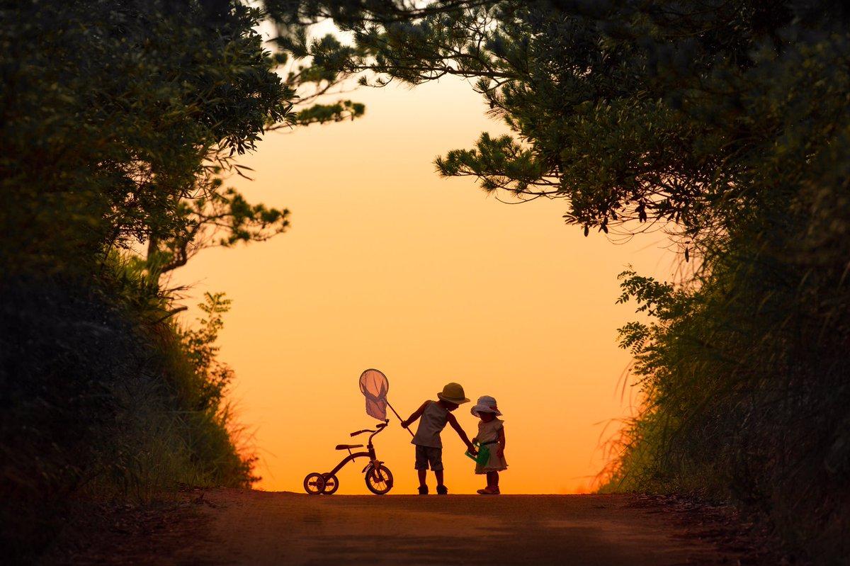 #私を布教して小さな物語を写しています。※写真は合成ではありません。