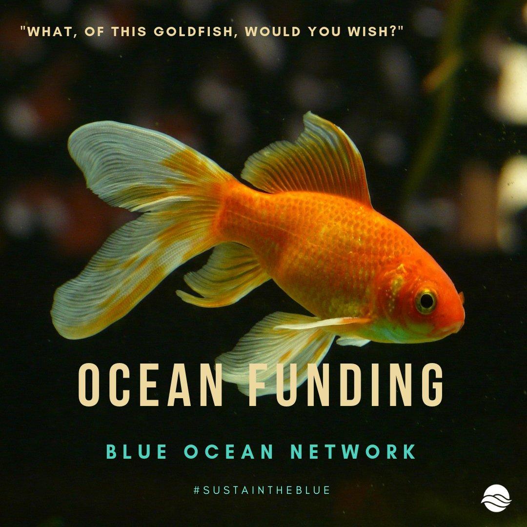 oceanfunding hashtag on Twitter